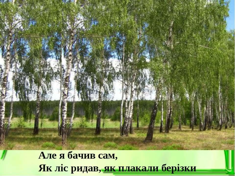 Але я бачив сам, Як ліс ридав, як плакали берізки