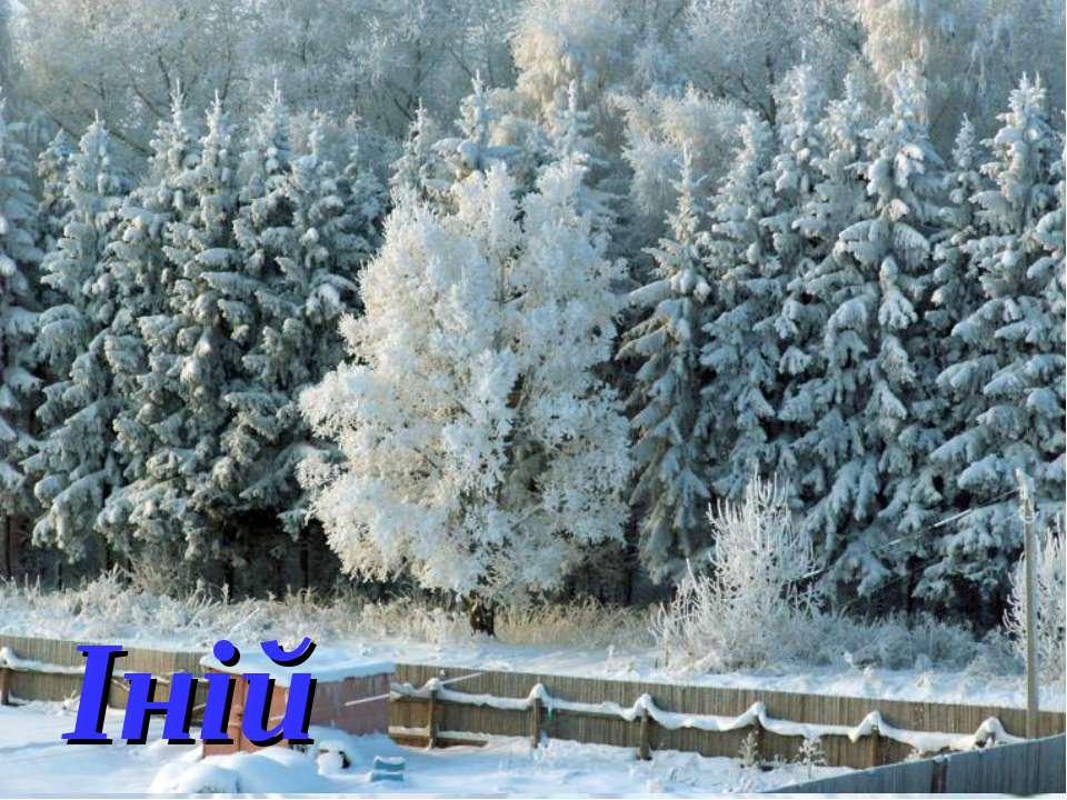 Загадки про зиму Іній