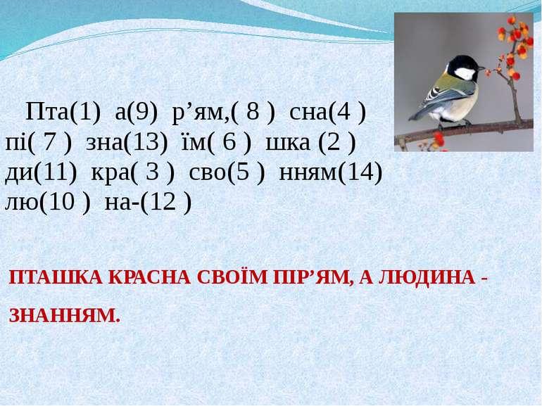 ПТАШКА КРАСНА СВОЇМ ПІР'ЯМ, А ЛЮДИНА - ЗНАННЯМ. Пта(1) а(9) р'ям,( 8 ) сна(4...