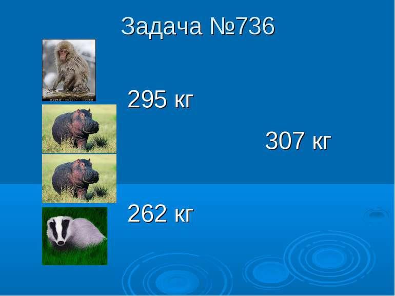 Задача №736 295 кг 307 кг 262 кг
