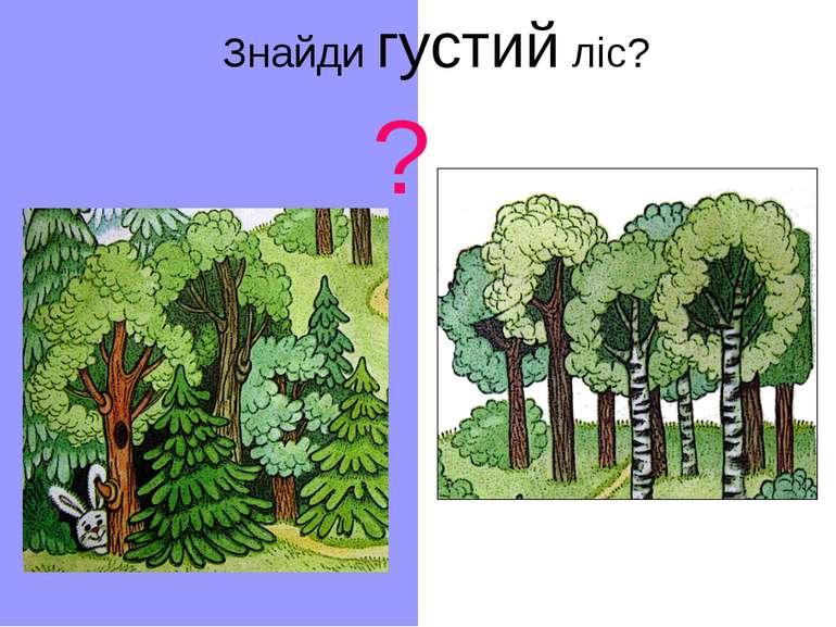 Знайди густий ліс? ?