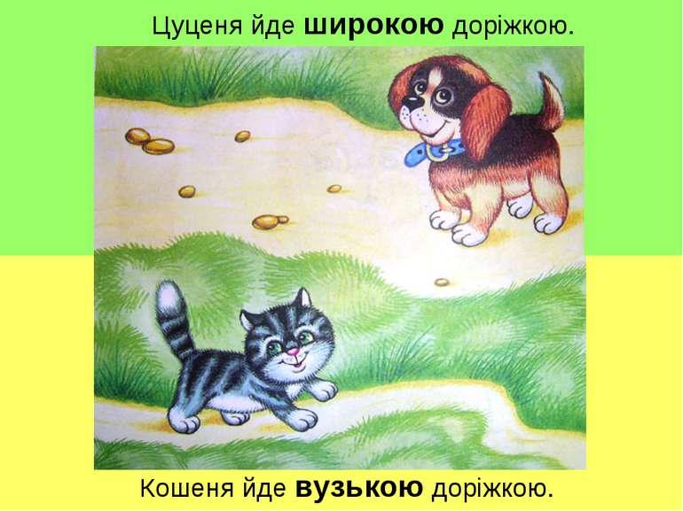Цуценя йде широкою доріжкою. Кошеня йде вузькою доріжкою.