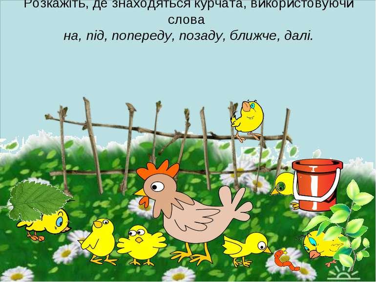 Розкажіть, де знаходяться курчата, використовуючи слова на, під, попереду, по...