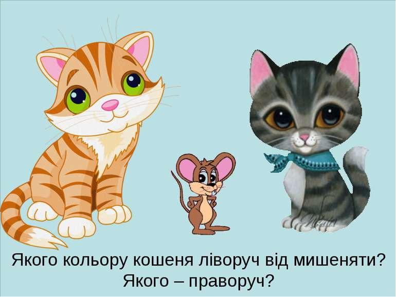 Якого кольору кошеня ліворуч від мишеняти? Якого – праворуч?
