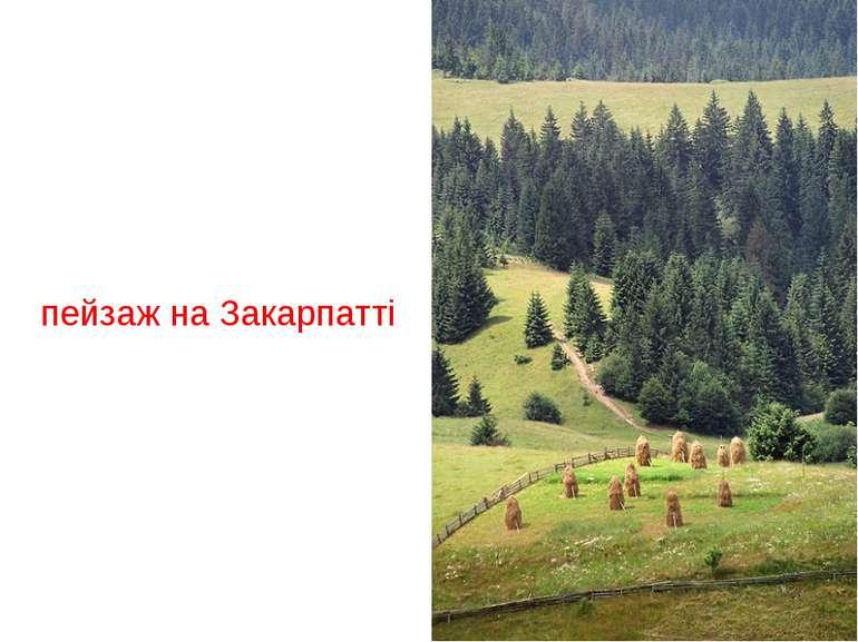 пейзаж на Закарпатті