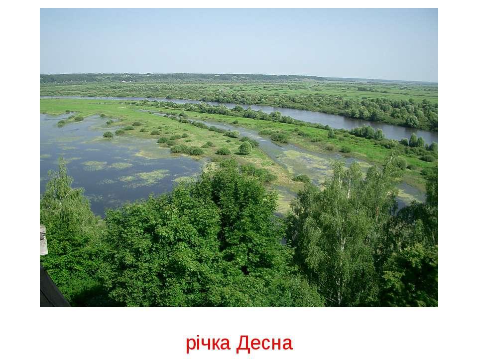 річка Десна