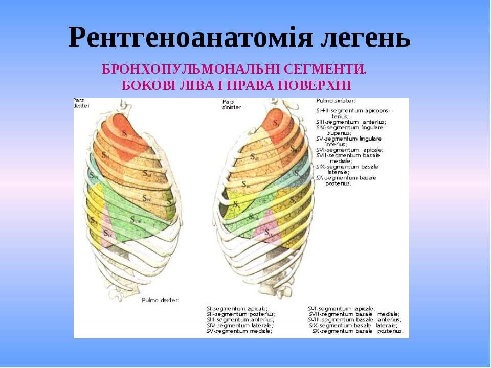 Рентгеноанатомія легень БРОНХОПУЛЬМОНАЛЬНІ СЕГМЕНТИ. БОКОВІ ЛІВА І ПРАВА ПОВЕ...