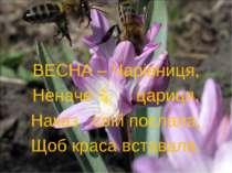 ВЕСНА – Чарівниця, Неначе цариця, Наказ свій послала, Щоб краса вставала.