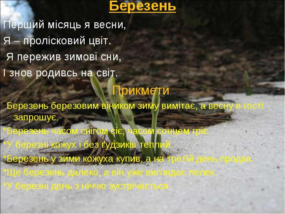 Березень Перший місяць я весни, Я – пролісковий цвіт. Я пережив зимові сни, І...