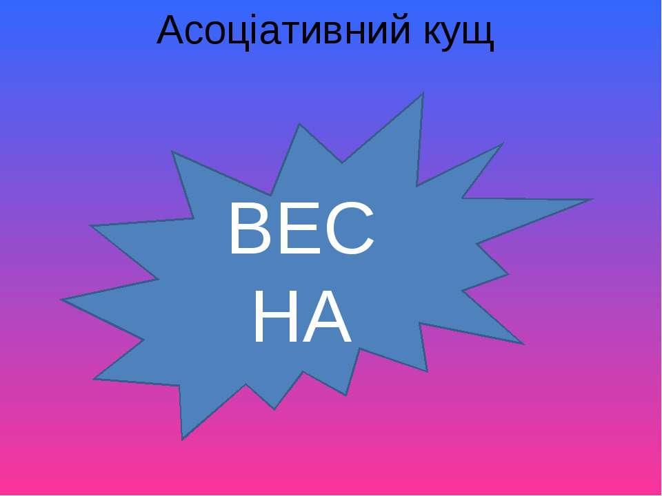 Асоціативний кущ ВЕСНА
