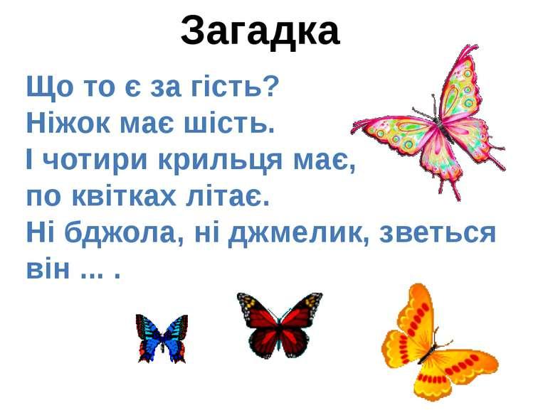 Загадка Що то є за гість? Ніжок має шість. І чотири крильця має, по квітках л...