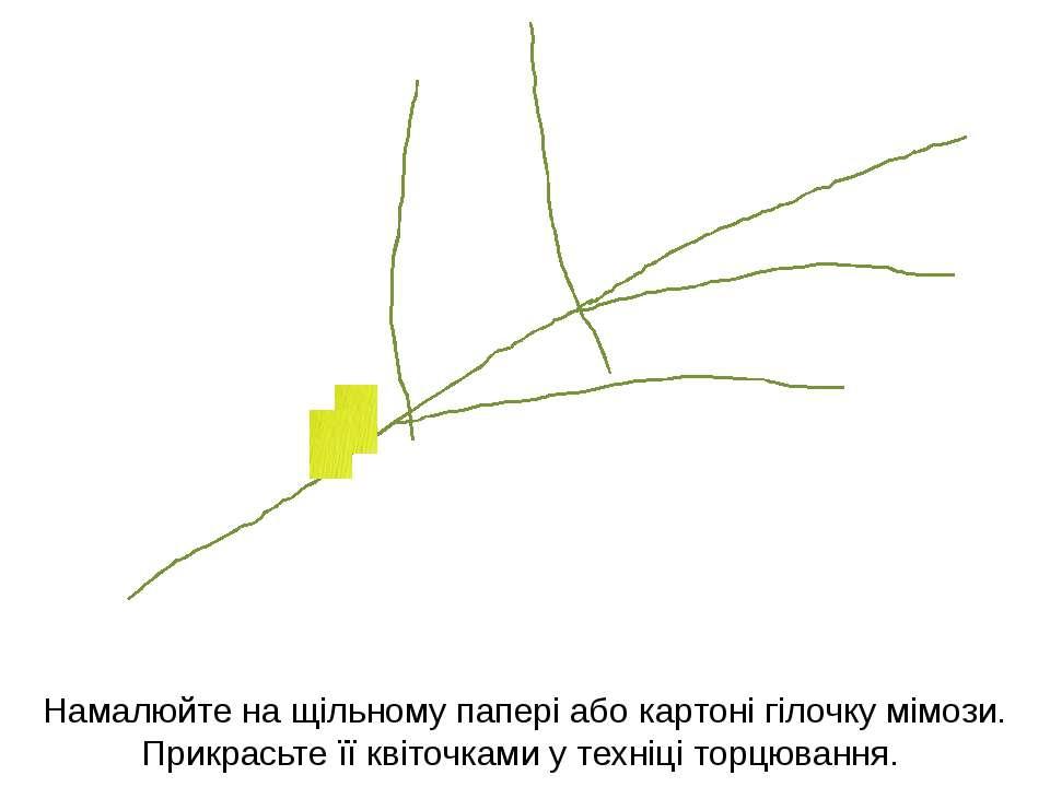 Намалюйте на щільному папері або картоні гілочку мімози. Прикрасьте її квіточ...