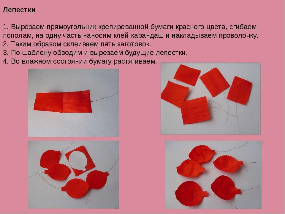 Лепестки 1. Вырезаем прямоугольник крепированной бумаги красного цвета, сгиба...