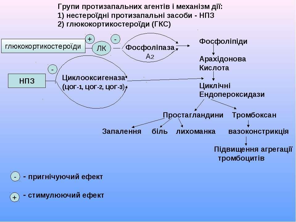 Групи протизапальних агентів і механізм дії: 1) нестероїдні протизапальні зас...