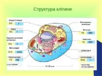Структура клітини