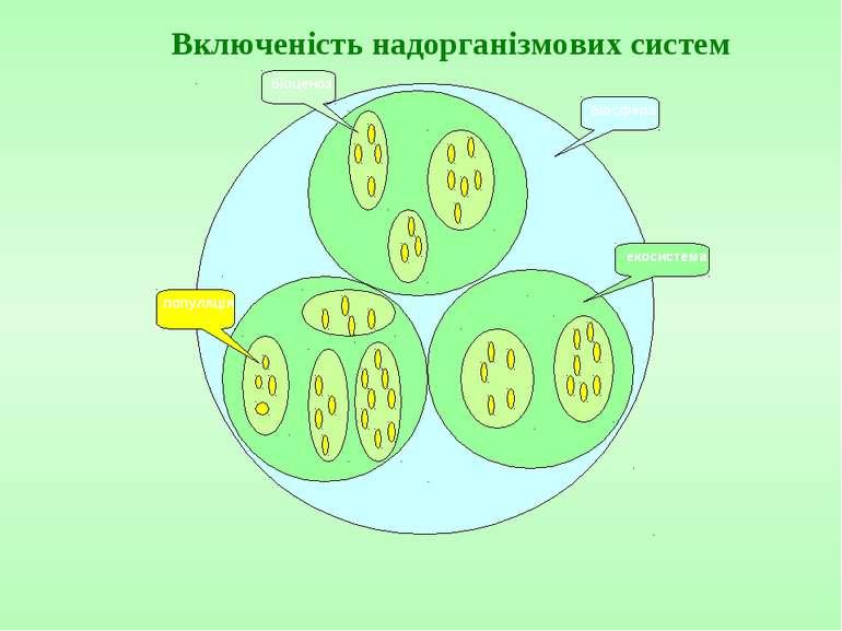Включеність надорганізмових систем