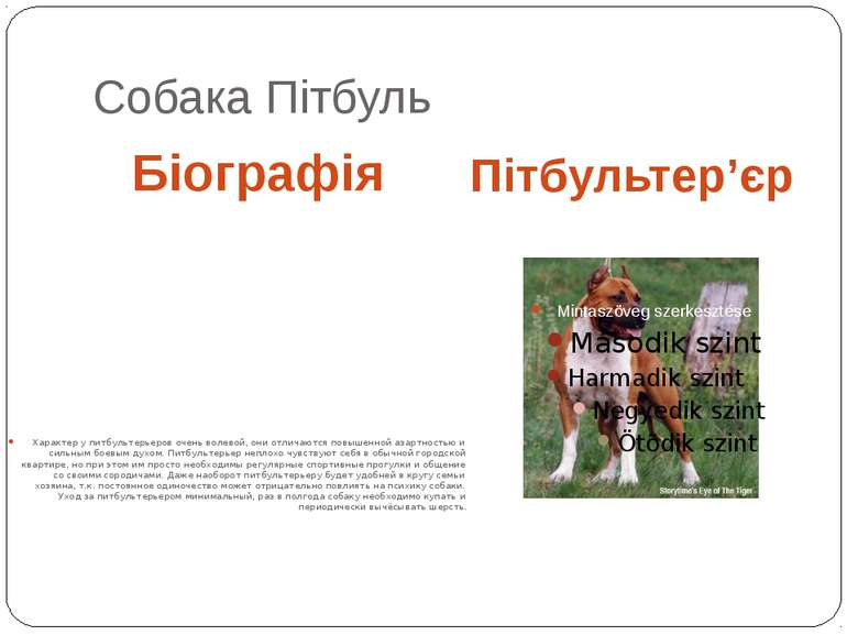 Собака Пітбуль Біографія Пітбультер'єр Характер у питбультерьеров очень волев...