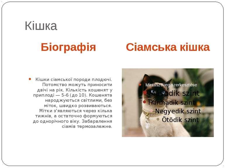 Кішка Біографія Сіамська кішка Кішки сіамської породи плодючі. Потомство можу...