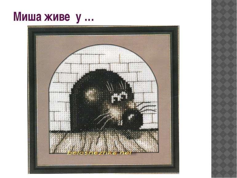 Миша живе у …