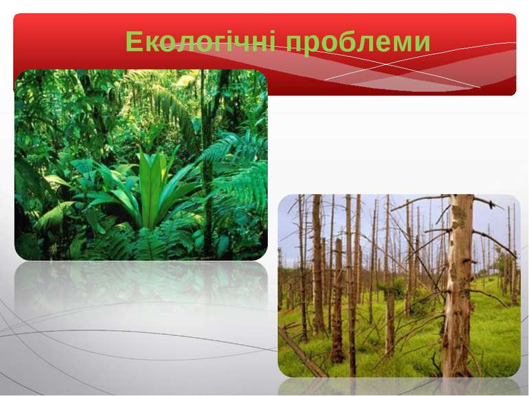 Екологічні проблеми