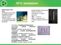 ЗУЧ: визнання Effie Awards 2011, 2012 (нагорода за рекламну Кампанію Зробимо ...