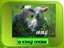 вівці в кінці слова