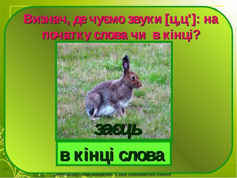 Визнач, де чуємо звуки [ц,ц']: на початку слова чи в кінці? в кінці слова заєць