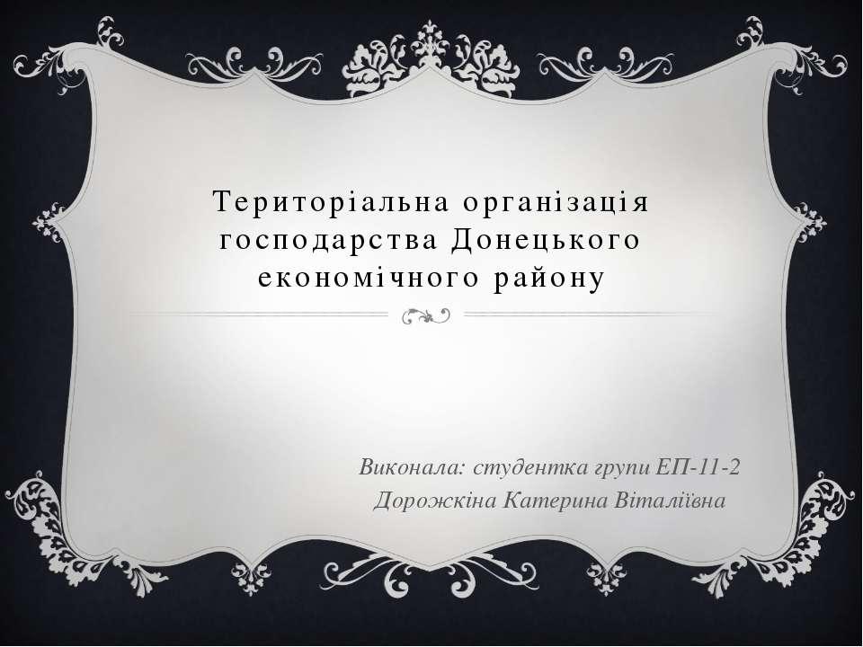 Територіальна організація господарства Донецького економічного району Виконал...