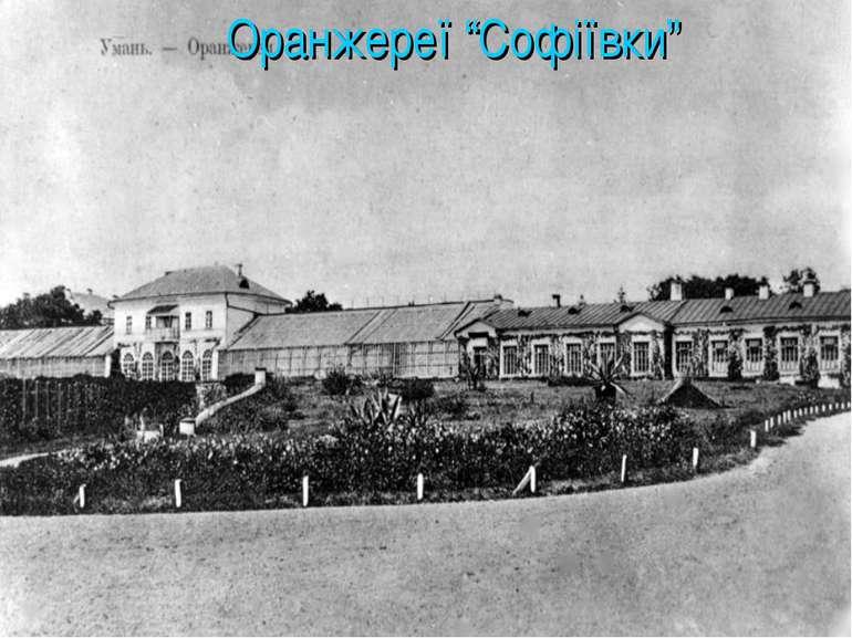 """Оранжереї """"Софіївки"""""""