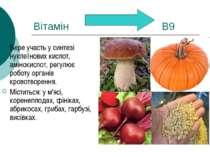 Вітамін В9 Бере участь у синтезі нуклеїнових кислот, амінокислот, регулює роб...