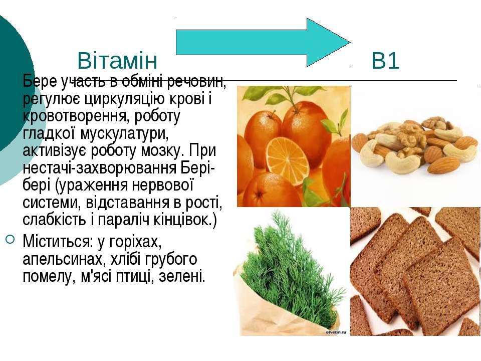 Вітамін В1 Бере участь в обміні речовин, регулює циркуляцію крові і кровотвор...