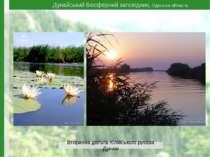 Дунайський біосферний заповідник, Одеська область Вторинна дельта Кілійського...