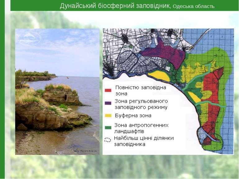 Дунайський біосферний заповідник, Одеська область