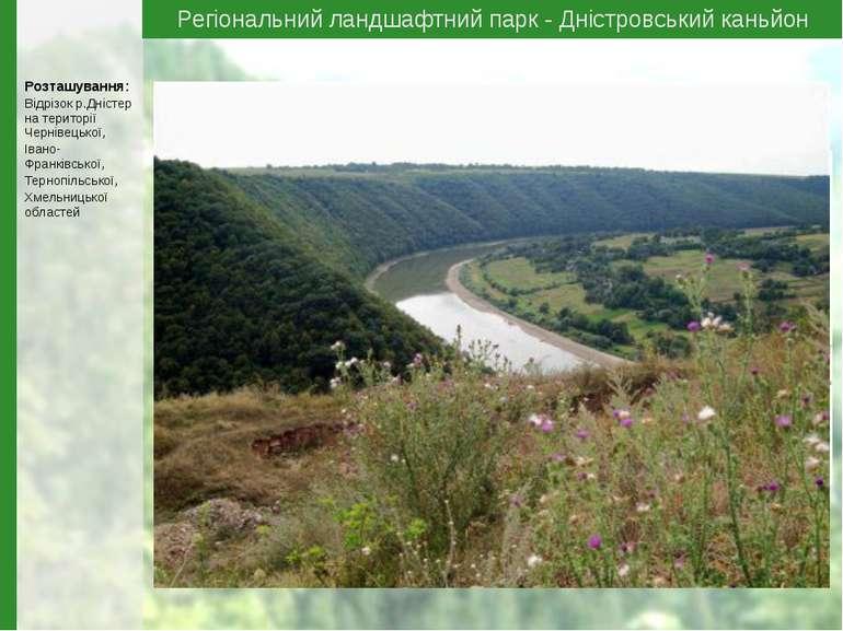 Регіональний ландшафтний парк - Дністровський каньйон Розташування: Відрізок ...