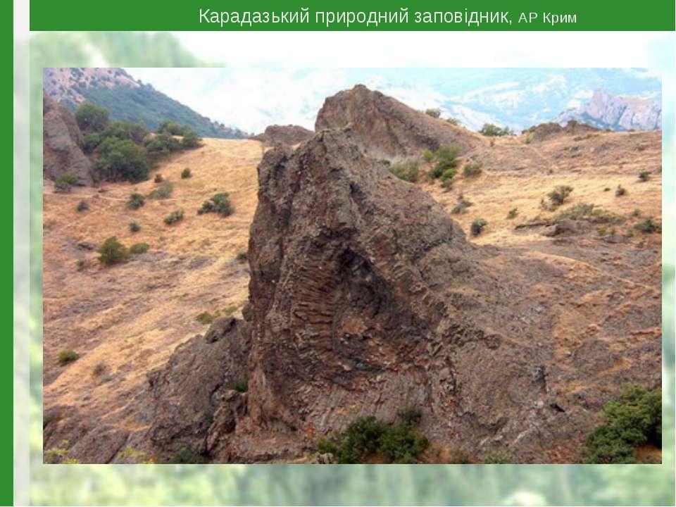 Карадазький природний заповідник, АР Крим