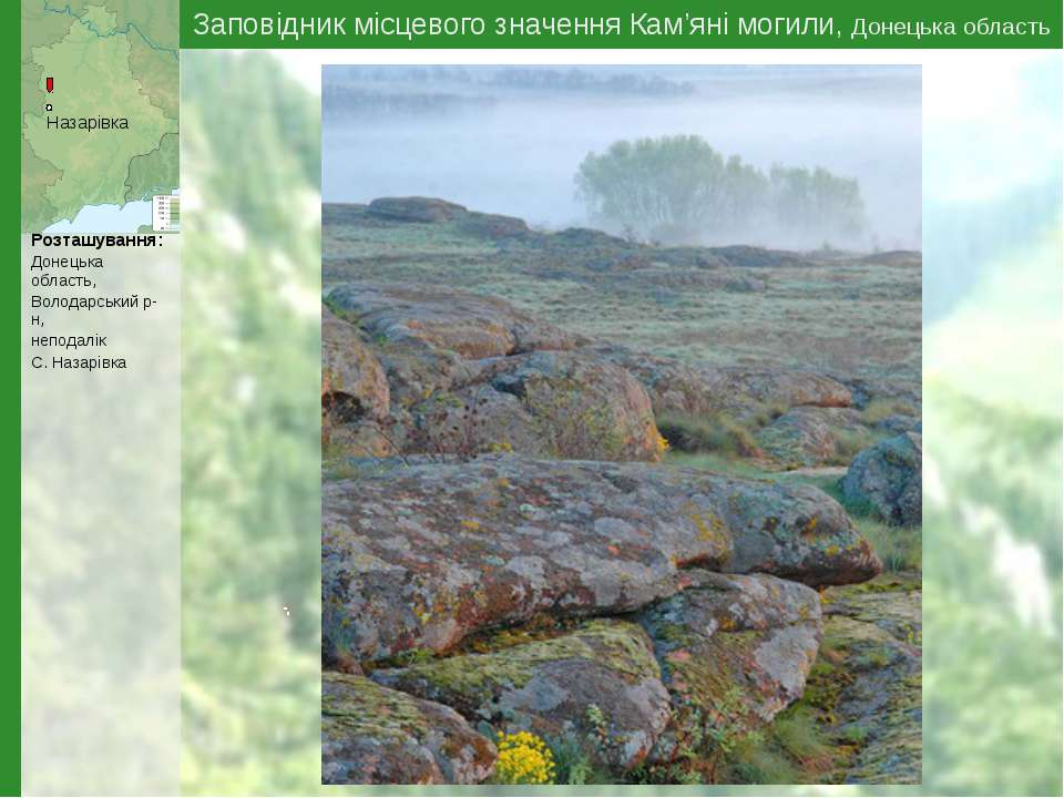 Заповідник місцевого значення Кам'яні могили, Донецька область Назарівка Розт...