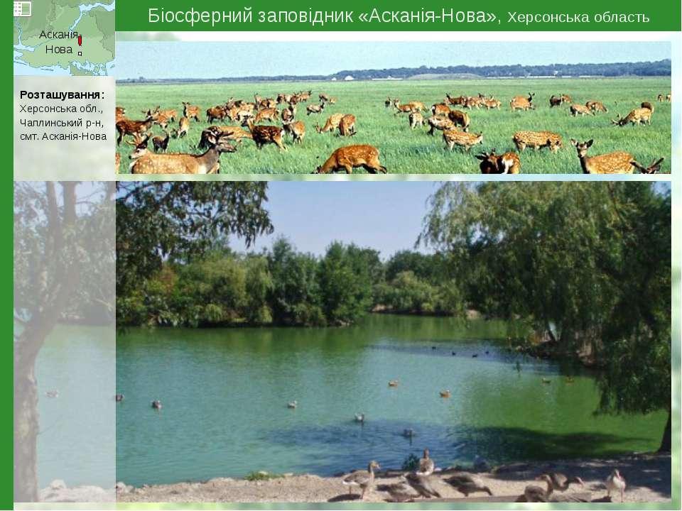 Біосферний заповідник «Асканія-Нова», Херсонська область Асканія- Нова Розташ...