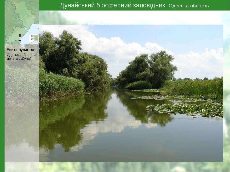 Дунайський біосферний заповідник, Одеська область Розташування: Одеська облас...