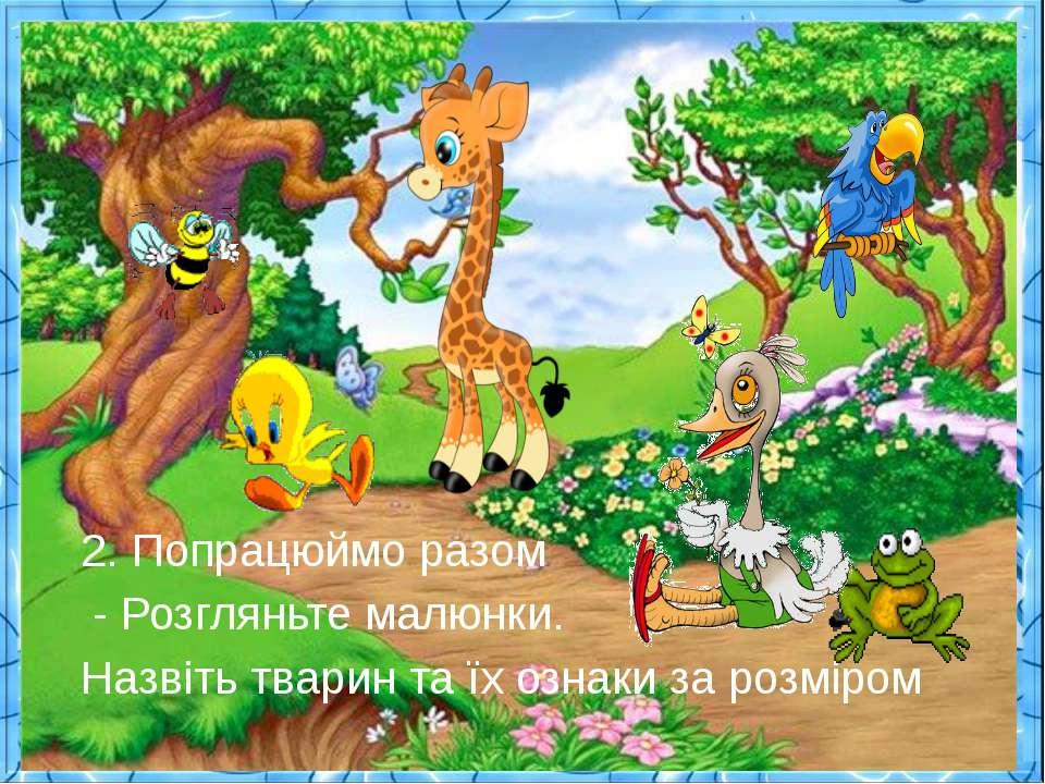 2. Попрацюймо разом - Розгляньте малюнки. Назвіть тварин та їх ознаки за розм...