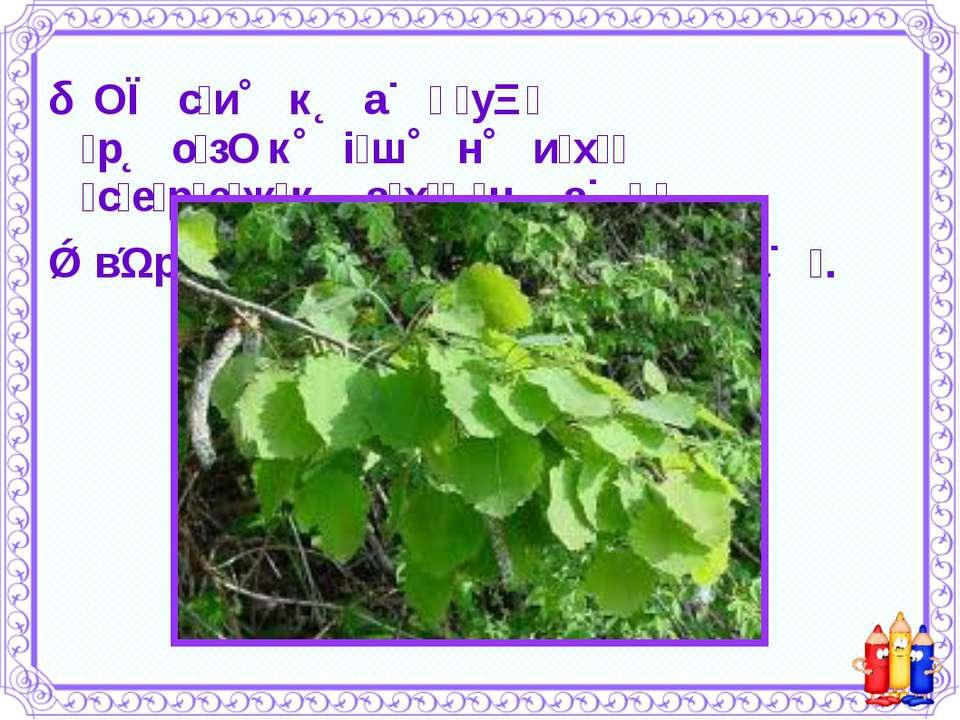 О с и к а у р о з к і ш н и х с е р е ж к а х - н а в р о ж а й в і в с а .