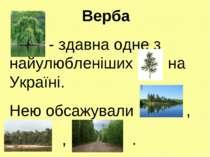 Верба - здавна одне з найулюбленіших на Україні. Нею обсажували , , .