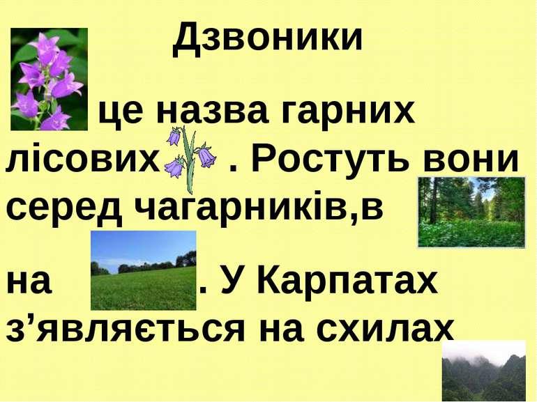 Дзвоники - це назва гарних лісових . Ростуть вони серед чагарників,в , на . У...