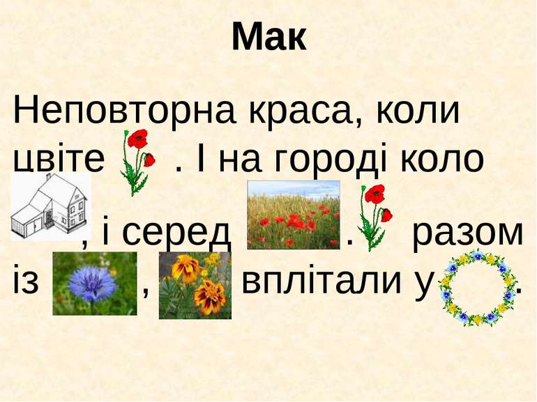 Мак Неповторна краса, коли цвіте . І на городі коло , і серед . разом із , вп...