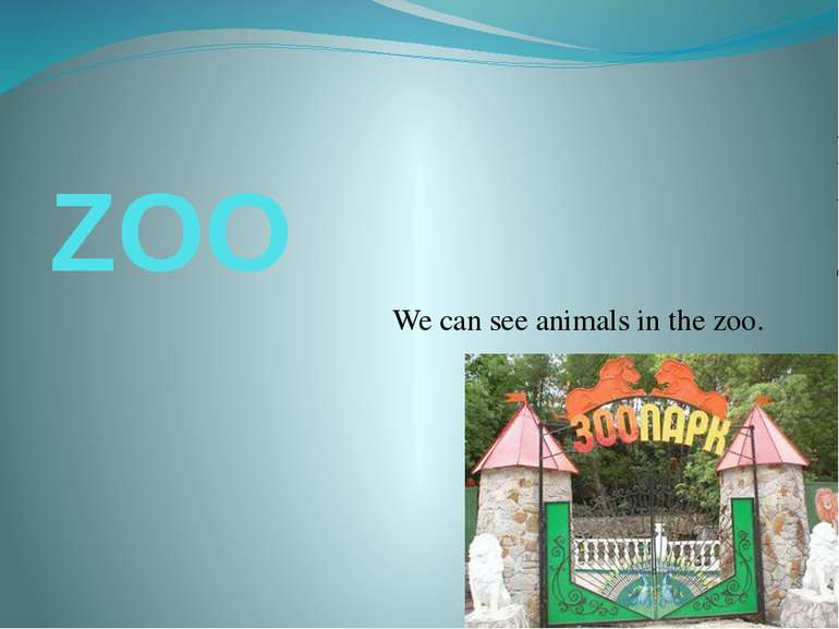 ZOO We can see animals in the zoo.