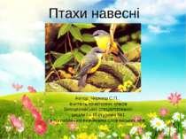Птахи навесні Автор: Черниш С.П., вчитель початкових класів Білоцерківської с...