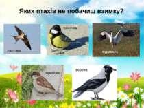 Яких птахів не побачиш взимку? ластівка горобчик ворона журавель синичка