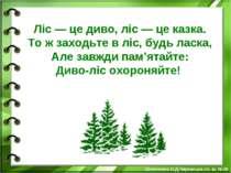 Ліс — це диво, ліс — це казка. То ж заходьте в ліс, будь ласка, Але завжди па...