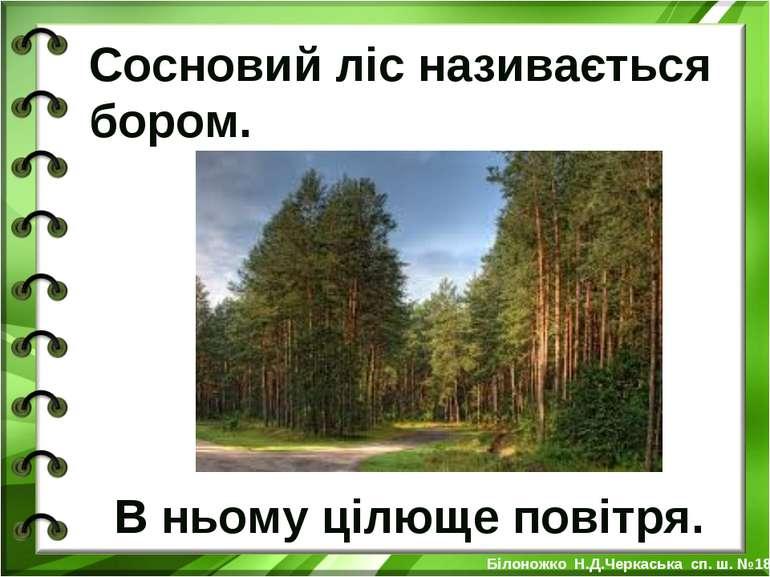 Сосновий ліс називається бором. В ньому цілюще повітря. Білоножко Н.Д.Черкась...