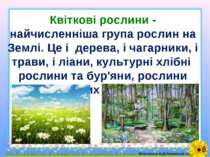 Квіткові рослини - найчисленніша група рослин на Землі. Це і дерева, і чагарн...