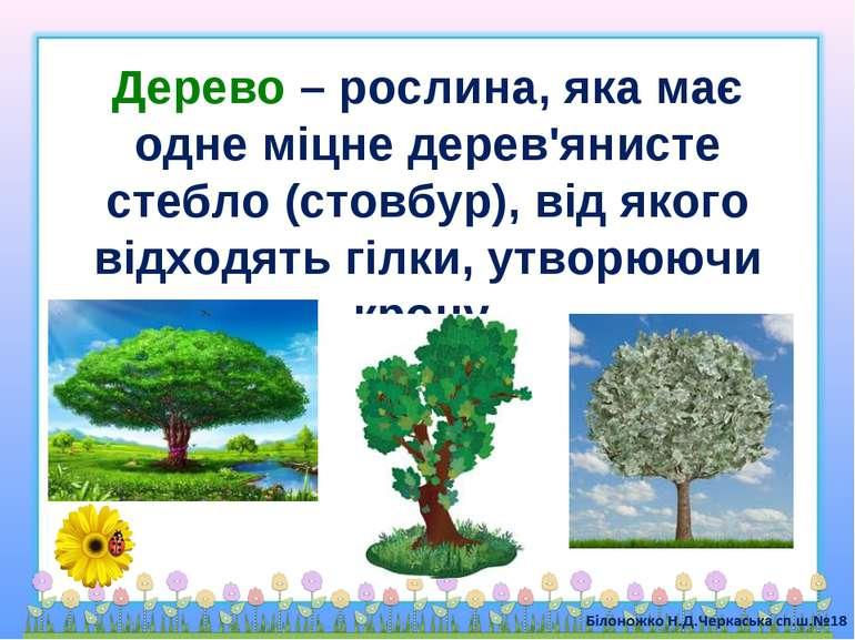 Дерево – рослина, яка має одне міцне дерев'янисте стебло (стовбур), від якого...
